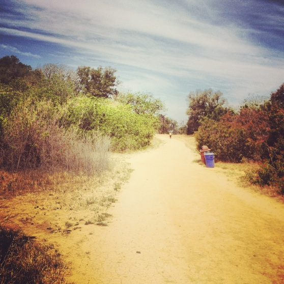 arid hikes in studio city, LA.