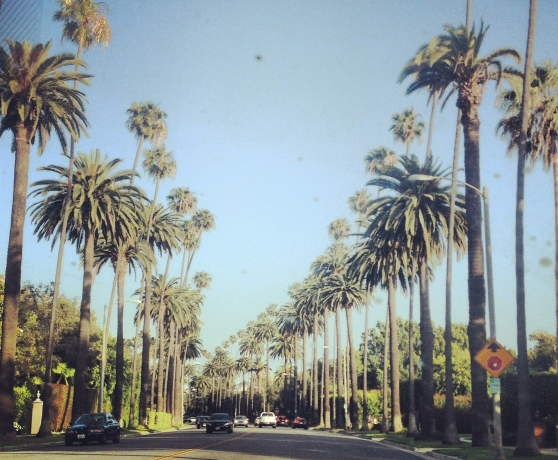 iconic. beverly hills, LA.