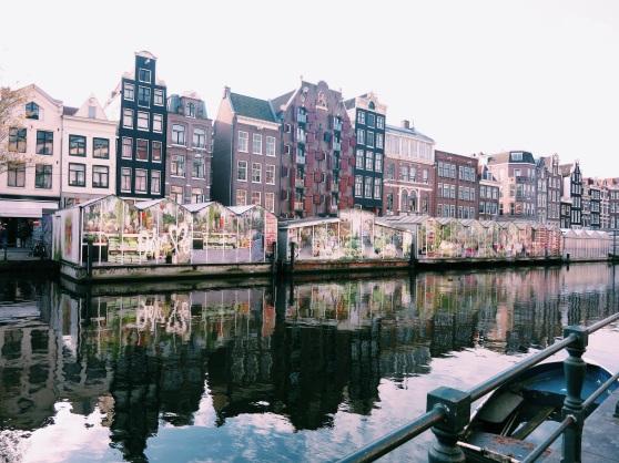 amsterdam appreciation