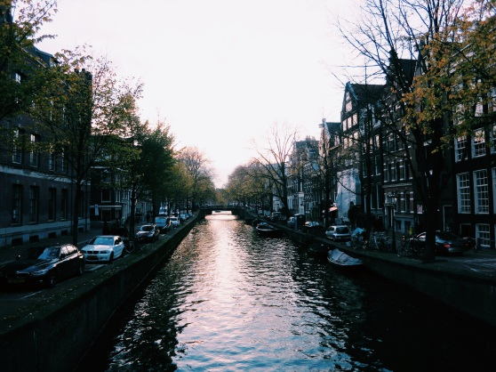 amsterdam appreciations
