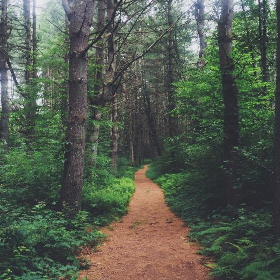 summer hike healthy